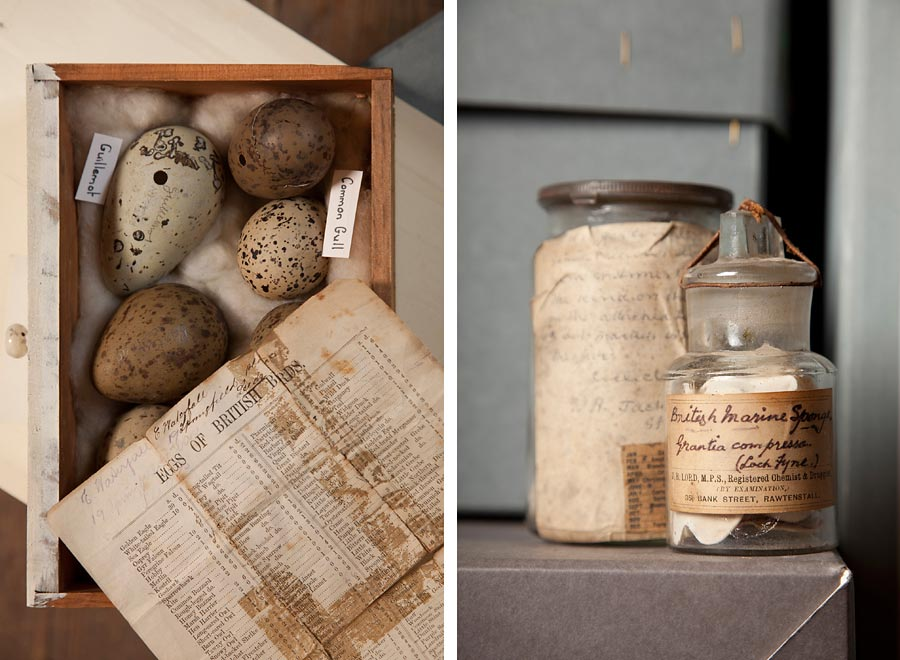 Two still life images of artefacts (eggs and jars) in a museum.